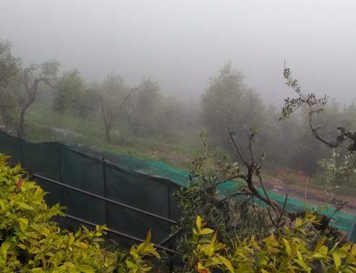 Diario di Campagna: 'È la pioggia che va'